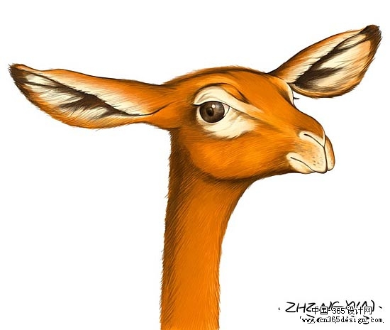 超可爱卡通动物的画法