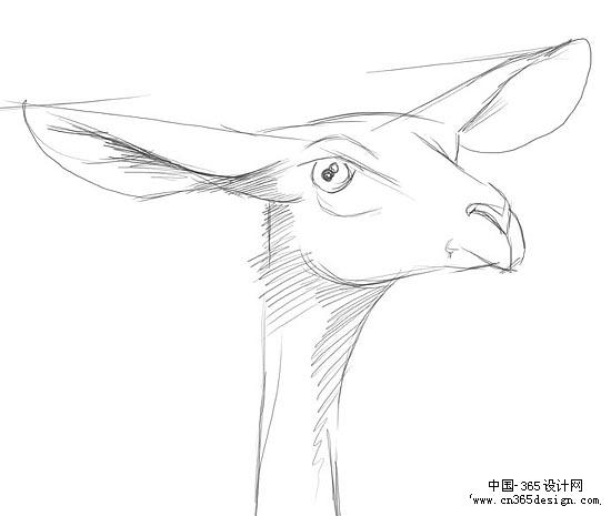可爱卡通素描画 铅笔画动物漫画素描- 可爱 可爱动漫女孩素描简笔画
